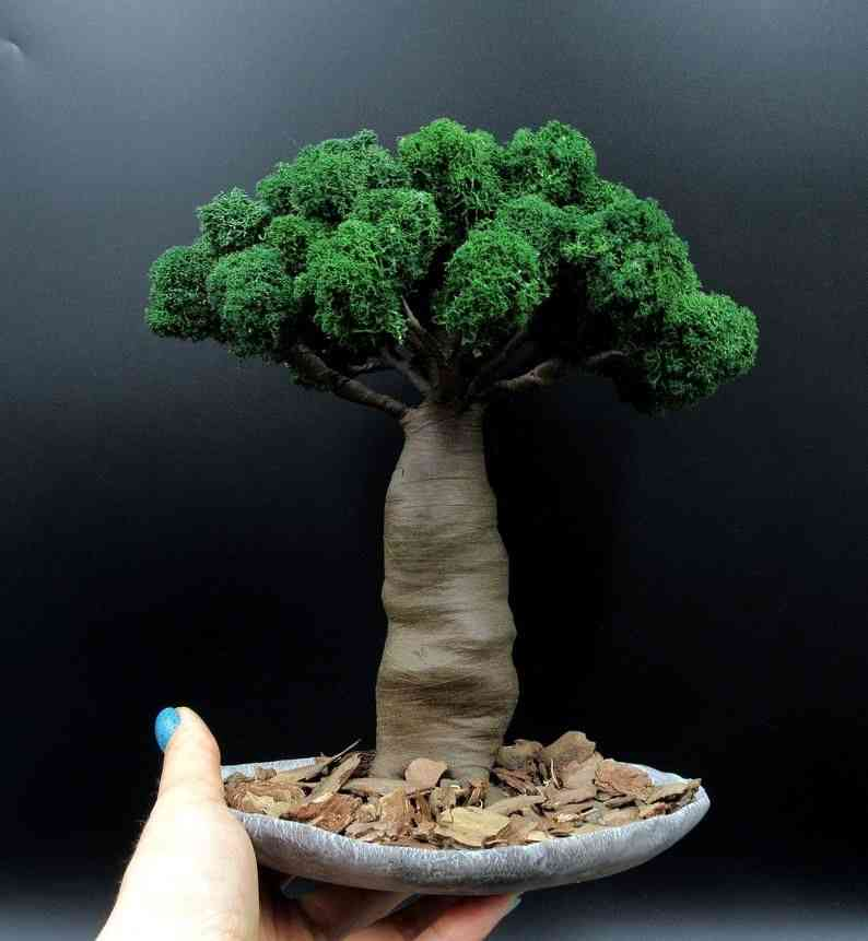 Artificial Bonsai tree Zen garden with Buddha Baobab tree | Etsy | Bonsai tree, Zen garden, Bonsai